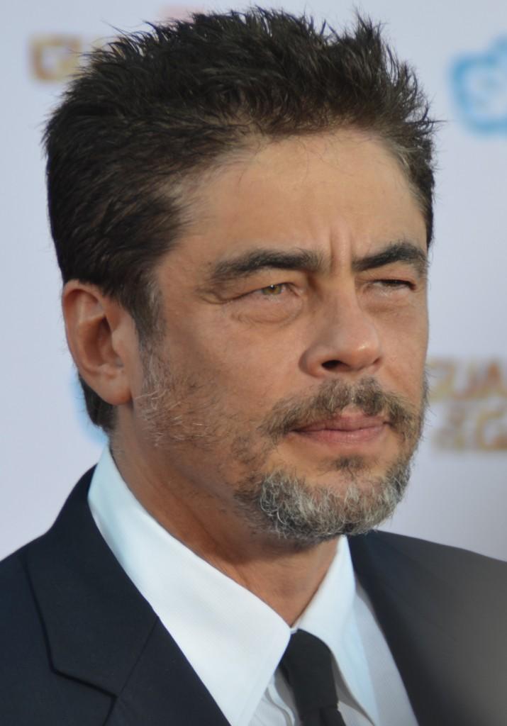 Benicio_Del_Toro_-_Guardians_of_the_Galaxy_premiere_-_July_2014_(cropped)